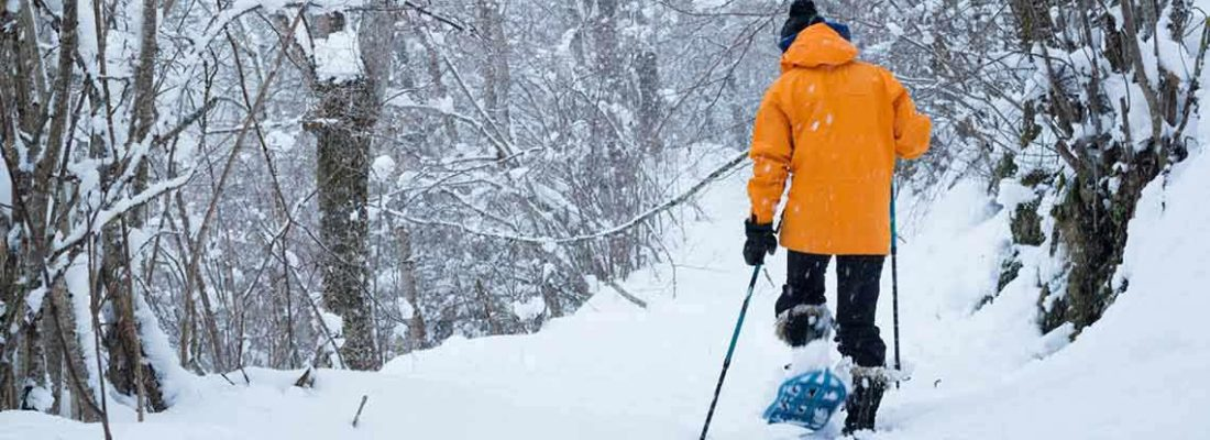 Snowshoeing Guide for Park City Trails