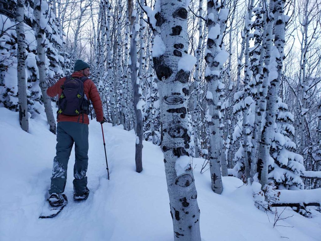 Man Snowshoeing at Dusk