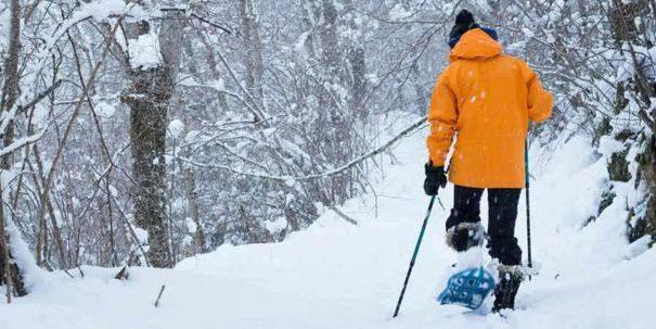 Snowshoeing Park City
